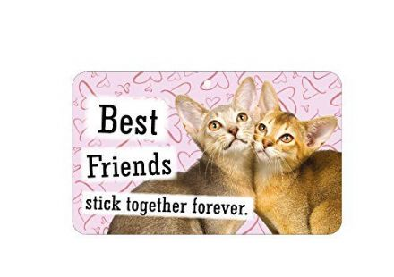 Best Friends Stick Together Forever Fun Sign